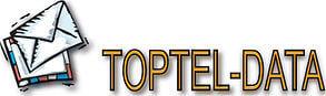 Toptel-Data Logo